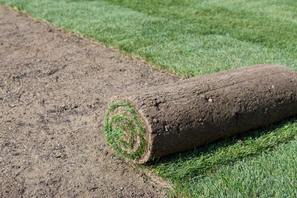 SOD installation in San Jose, CA