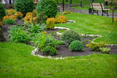 landscaping-lawn