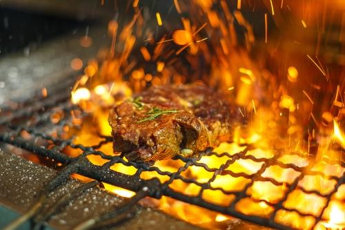 Advantages of Fire Magic Grill