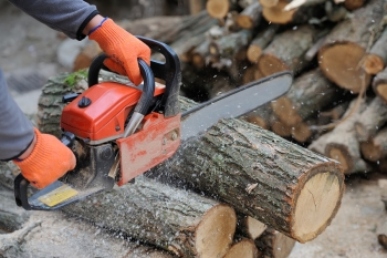 Chainsaw Safety 101 by Payless Hardware & Rockery