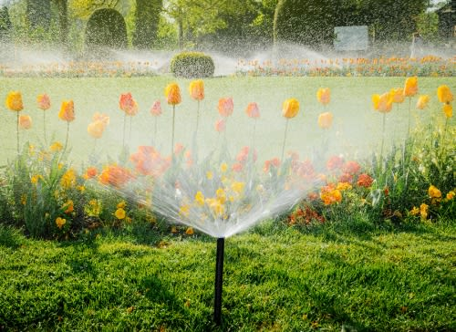 Saving Water with Automated Irrigation System